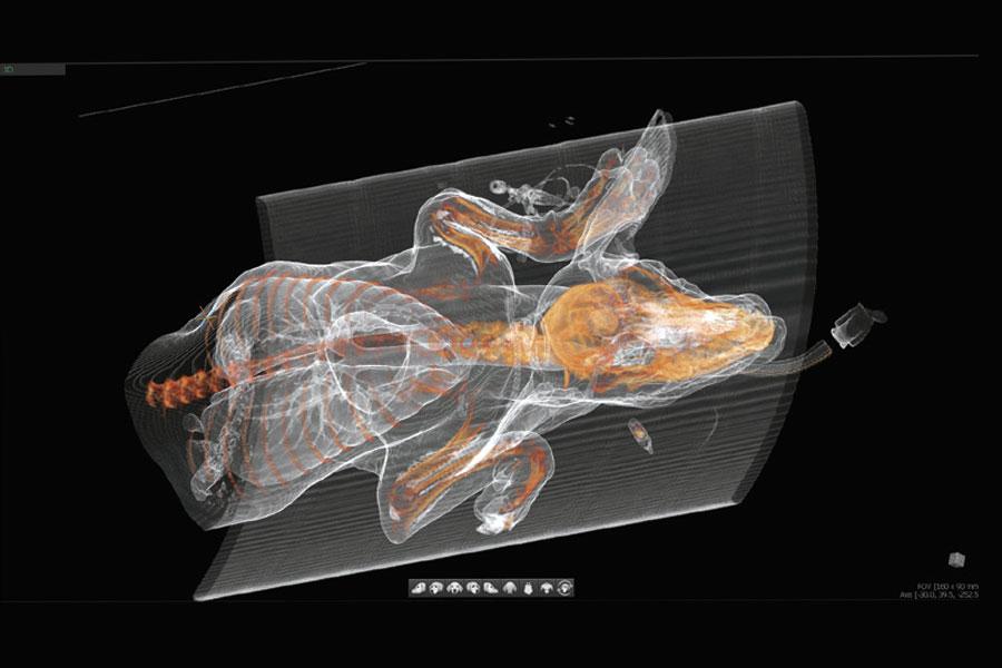 Helical Scanner | Avanzata tecnologia applicativa